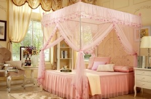 Bedroom Decor Ideas having mosquito netting in teenager room.