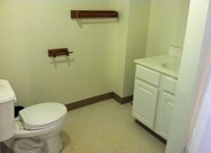 Bathroom Decorating ideas for Rental Property.
