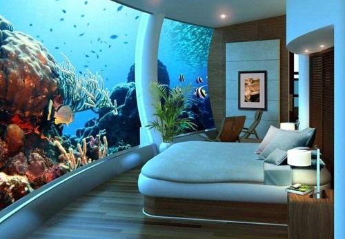 Combination of bed and aquarium.