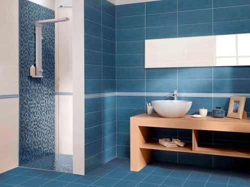 Plain bathroom tile design for old age people.