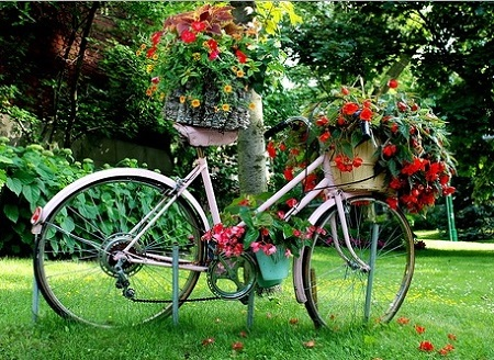 Old bicycle painted and planted for garden.