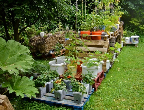 Container gardens to decorate home exterior.