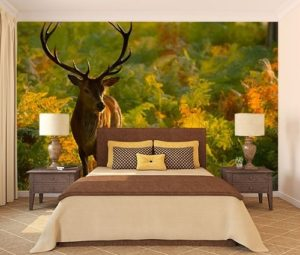 Woodland photo wallpaper for summer bedroom.