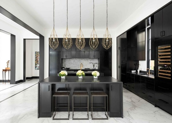 Lovely black and white kitchen interior