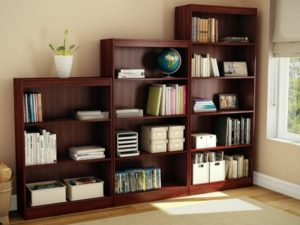 Bookcase common object of living room