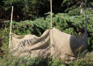 Protecting garden in winters