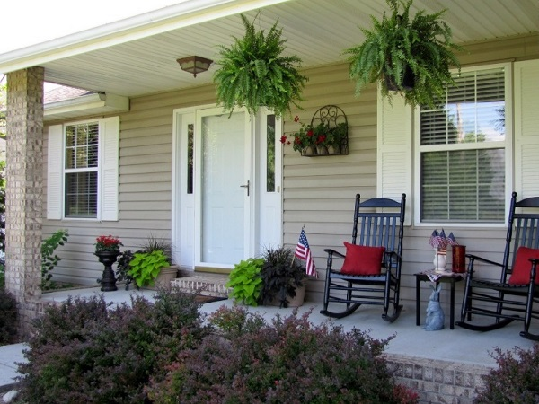 Plants to decorate porch wall