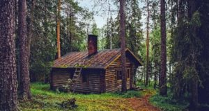 Responsibilities For Log Cabin And Log Home Ownership Along With Pictures And Gallery
