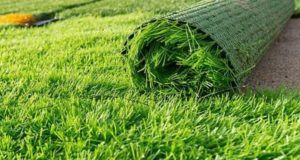5 Best uses for Artificial Grass